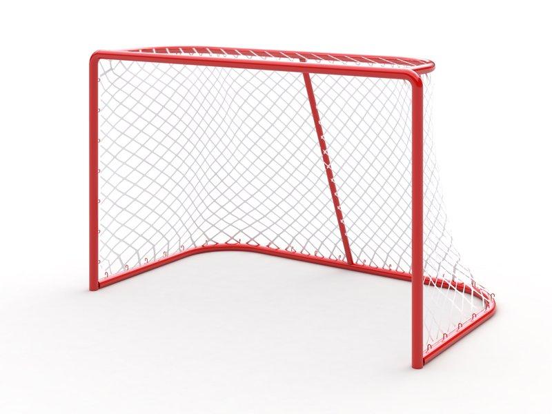 Ворота хоккейные D 414
